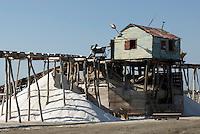 Dominikanische Republik, Salinen in Salinas bei Bani an der Südküste 70km westlich von Santo Domingo