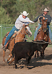 A competitor chases after a steer in the Team Roping event at the Minden Ranch Rodeo Buckaroo Fest during the NV150 Fair at Fuji Park in Carson City, Nev., on Saturday, August 2, 2014.<br /> (Photo By Kevin Clifford)