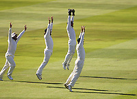 Cricketers celebrating