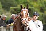 Maristar, ridden by John Velazquez, in the Beldame Invitational Stakes (GI) at Belmont Park, in Elmont, New York on September 29, 2012.
