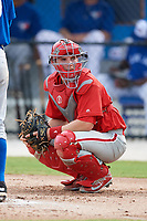 Philadelphia Phillies catcher Henri Lartigue (22) looks into the dugout during an Instructional League game against the Toronto Blue Jays on October 7, 2017 at the Englebert Complex in Dunedin, Florida.  (Mike Janes/Four Seam Images)