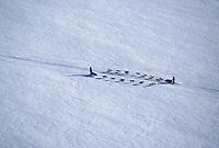 Aerial of Jeff King Passing Team Head On Yukon River
