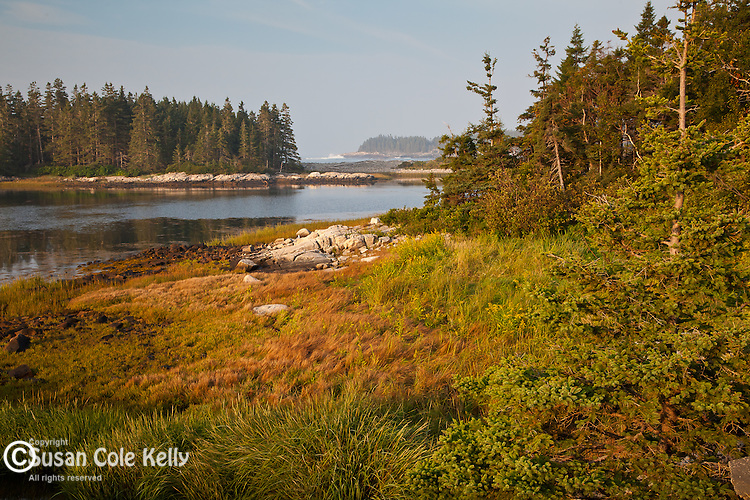 Morning light at Schoodic Point in Acadia National Park, Downeast, ME, USA
