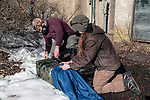 New Hampshire Fish and Game biological technician, Brett Ferry (L), and University of New Hampshire graduate student, Melissa Bauer (R) remove a trapped New England cottontail rabbit from a trap inside the Great Bay National Wildlife Refuge.