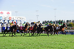 The pole at the Pattison Canadian International Stakes at Woodbine Race Course in Toronto, Canada on October 19, 2014.