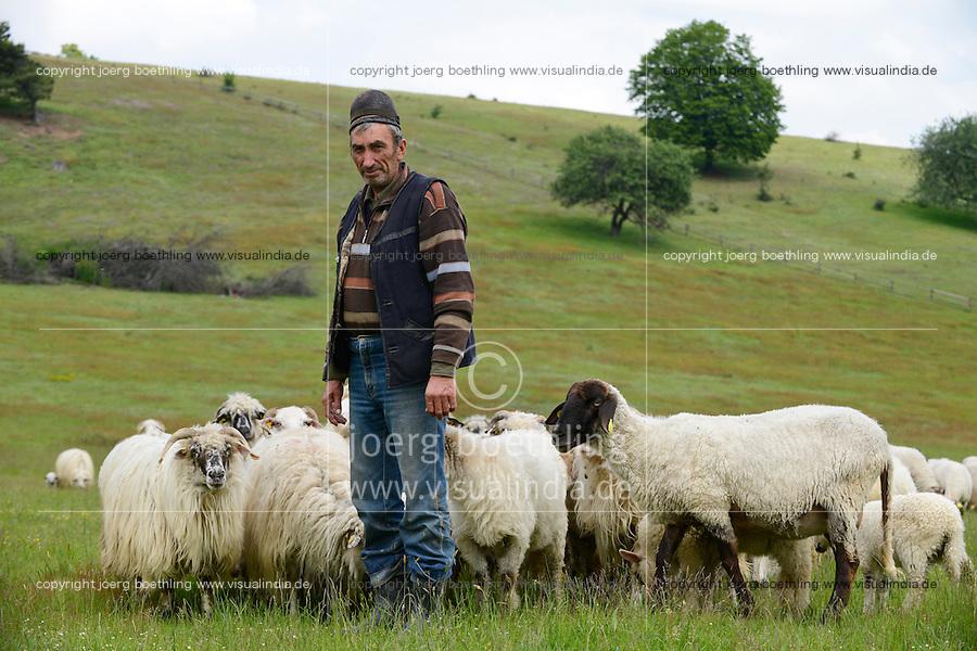 ROMANIA Transylvania, village Sura Mica near Sibiu, shepherd with sheeps  / RUMAENIEN Transsilvanien Siebenbuergen, Dorf Sura Mica, dt. Kleinscheuern, Schafhirte mit Schafherde auf Weide
