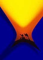 India Pushkar camel market - festival 00007228