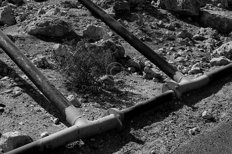 3 inch pipes carrying water to for the chicken in the Jewish Settlement of Carmiel, in the West Bank. Amnesty International has accused Israel of denying Palestinians adequate access to water while allowing Jewish settlers in the occupied West Bank almost unlimited supplies. Photo by Quique Kierszenbaum