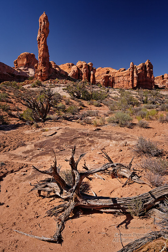 Desert Scene, Arches National Park, Utah. Available in sizes up to 30 x 45 inches.