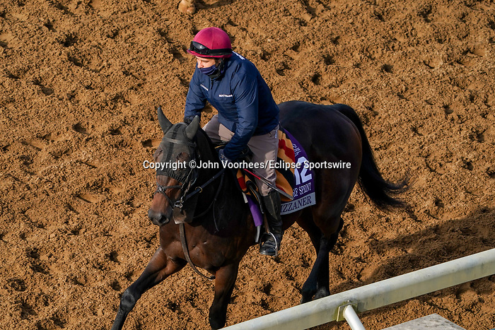 November 5, 2020: Lipizzaner, trained by trainer Aidan P. O'Brien, exercises in preparation for the Breeders' Cup Juvenile Turf Sprint at Keeneland Racetrack in Lexington, Kentucky on November 5, 2020. John Voorhees/Eclipse Sportswire/Breeders Cup/CSM