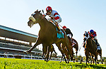 September 27, 2014: Stephanie's Kitten, ridden by John Velazquez, wins the Flower Bowl Stakes on Jockey Club Gold Cup Day at Belmont Park Race Track in Elmont, New York. Bob Mayberger/ESW/CSM