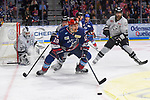 Adler Mannheim - Nuernberg Ice Tigers 13.02.2020