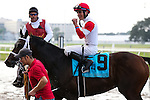 NEW ORLEANS, LA - JANUARY 21:<br />  Granny's Kitten #9 ridden by Miguel Mena wins the Colonel E.R. Bradley Handicap at the Fairgrounds Race Course on January 21,2017  in New Orleans, Louisiana. (Photo by Steve Dalmado/Eclipse Sportswire/Getty Images)