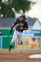 West Virginia Black Bears second baseman Raul Siri (12) runs the bases during a game against the Batavia Muckdogs on June 19, 2018 at Dwyer Stadium in Batavia, New York.  West Virginia defeated Batavia 7-6.  (Mike Janes/Four Seam Images)