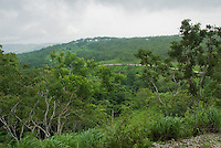 Coastal forest on the lower slopes of Mount Manucoco, Atauro Island, Timor-Leste (East Timor)