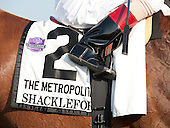 Shackleford's saddlecloth.