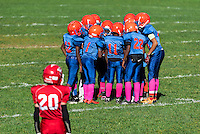 Young boys in the huddle during a Pop Warner football game, USA