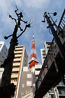 The Tokyo Tower, surrounded by residential and office buildings.<br /> <br /> Image ID: 2278367