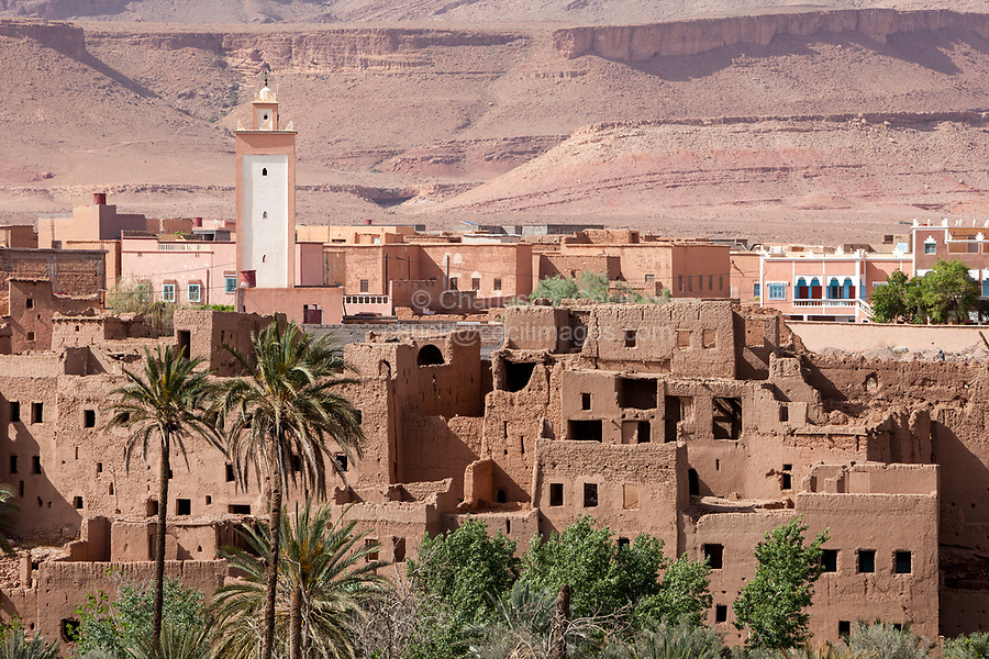 Tineghir, Morocco.  Palmeraie Oasis Scene.  Abandoned Traditional Houses in Foreground, Modern Houses in Background.