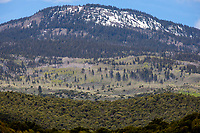 Dixie National Forest adjacent to Capitol Reef National Park, Utah