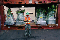 Wrapped and sprayed, plants await export in the Hilo port after inspections by the Department of Agriculture and other port inspectors. Nursery workers must inspect plants for eggs which might hatch and spread the migration of the Cogui frog. War is waged on the Coqui frog because its numbers are exploding--and it has no predators. <br /> The Coqui--much revered in its native Puerto Rico--was first imported on plant material. The Coqui is as large as a quarter and has a chirpy little call that is the decibel level of a lawnmower. <br /> Lawsuits now force homeowners to disclose the fact they have frogs because Hawaiians are so upset by the noise. Residents in some areas coat the jungle in their backyards with hydrated lime hoping to curb the numbers.