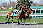 27 March 2010: Age Of Humor with Russel Baze up in the post parade before the G3 Bourbonette Oaks at Turfway Park in Florence, Kentucky.