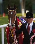 Joie de Vivre wins the Hanshin Juvenile Fillies at Hanshin Racecourse on December 11th, 2011
