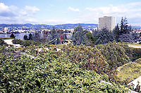 Oakland Museum--looking NE over descending terraces toward Lake Merritt. Roche, Dinkerloo Assoc. Landscape, Dan Kiley. 1969
