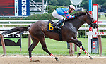 Come Dancing (no. 6) wins Race 6 July 25 at Saratoga Race Course, Saratoga Springs, NY.    Ridden by Irad Ortiz Jr. and trained by Carlos Martin, Come Dancing finished 4 1/2 lengths in front of Pacific Gale (no. 2) in the 6 furlong race.  (Bruce Dudek/Eclipse Sportswire)