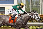 July 05, 2015: Grand Bili with Javier Castellano up wins the G3 Carry Back Stakes at Gulfstream Park.  Gulfstream Park, Hallandale Beach (FL). Arron Haggart/ESW/CSM
