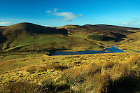 Grain Heads and The Mount above North Esk Reservoir, The Pentland Hills, The Pentland Hills Regional Park, Lothian