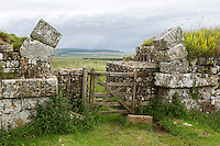 Northumberland,  England, UK.  Milecastle 37 with Remains of Arch over Gateway opening to the North.
