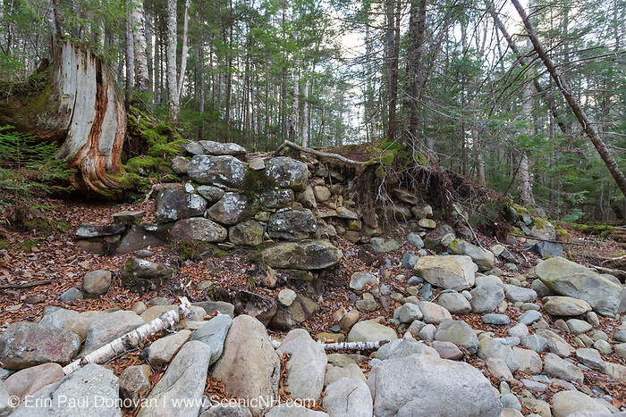 Old bridge abutment at Redrock Brook along Franconia Brook Trail in the Pemigewasset Wilderness of New Hampshire. The Franconia Brook Trail follows the old railroad bed of the East Branch & Lincoln Railroad (1893-1948). In 2011 high waters from Tropical Storm Irene caused most of the stone abutment to collapse (right side).
