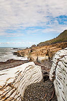 Limestone formations in Punakaiki - Paparoa National Park, West Coast, New Zealand