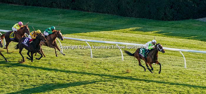 November 6, 2020: Aunt Pearl, ridden by Florent Geroux, wins the Juvenile Fillies Turf on Breeders' Cup Championship Friday at Keeneland on November 6, 2020: in Lexington, Kentucky. John Voorhees/Eclipse Sportswire/Breeders Cup/CSM