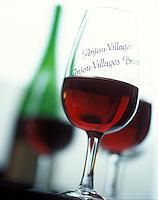 Europe/France/Pays de la Loire/Maine-et-Loire/Brissac : Dégustation de vins AOC Anjou Village Brissac