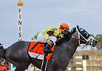 OLDSMAR, FLORIDA - MARCH 12: Destin #7, ridden by jockey Javier Castellano, as he breaks the track record, and wins the Lambholm South Tampa Bay Day Derby at Tampa Bay Downs on March 12, 2016 in Oldsmar, Florida (photo by Doug DeFelice/Eclipse Sportswire/Getty Images)