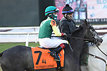 January 16, 2021: Barista in the SilverBulletDay Stakes at Fair Grounds Race Course in New Orleans, Louisiana. Parker Waters/Eclipse Sportswire/CSM