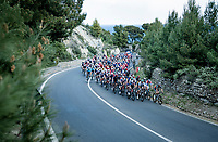 peloton up the Capo Berta<br /> <br /> 112th Milano-Sanremo 2021 (1.UWT)<br /> 1 day race from Milan to Sanremo (299km)<br /> <br /> ©kramon