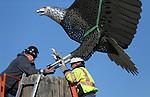 Eagle Sculpture Install