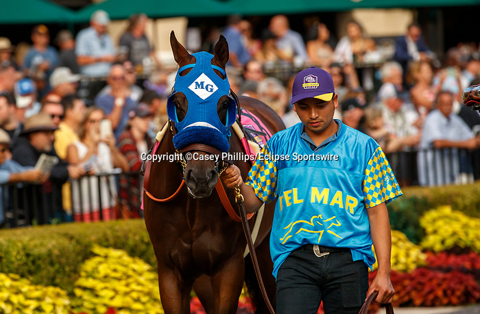 DEL MAR, CA  JULY 31: #8 Dr. Schivel, ridden by Flavien Prat, in the paddock before the Bing Crosby Stakes (Grade l) Breeders Cup Win and You're In Sprint Division on July 31, 2021 at Del Mar Thoroughbred Club in Del Mar, CA. (Photo by Casey Phillips/Eclipse lSportswire/CSM)