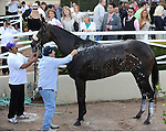 October 2, 2010.Zneyatta riden by Mike Smith is coolded down after winning The Lady's Secret Stakes at Hollywood Park, Inglewood, CA._Cynthia Lum/Eclipse Sportswire.com