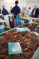 Europe/France/Bretagne/35/Ille et Vilaine/Saint-Malo:Marché de Paramé banc de fruits de mer ,Araignées femelles