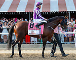 Mendelssohn in the post parade as Catholic Boy (no. 11) wins the Travers Stakes (Grade 1), Aug. 25, 2018 at the Saratoga Race Course, Saratoga Springs, NY.  Ridden by  Javier Castellano, and trained by Jonathan Thomas, Catholic Boy finished 4 lengths in front of Mendelssohn (No. 8).  (Bruce Dudek/Eclipse Sportswire)