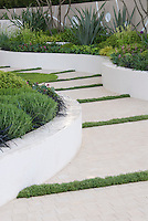 Garden Path with raised white wall beds and thymes in crevices in modern upscale garden with herbs, perennials, ornamental grasses, for classy effect in landscaping