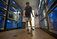 130729-N-DR144-019 - Gerad Fox, a graduate student at Loma Linda University's Center for Biodiversity and Conservation, works with an Inland Taipan in the center's venomous snake room. Inland Taipans, also known as Fierce Snakes, are widely considered to be the deadliest snake on earth based on standard measurements of the toxicity of their venom on mice.