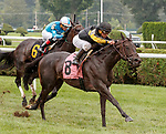 Sister Sophia (no. 8) wins Race 7 Aug. 11, 2018 at the Saratoga Race Course, Saratoga Springs, NY.  Ridden by Javier Castellano, and trained by Jorge Abreu,  Sister Sophia finished a length in front of Violent TImes (no. 6).  (Bruce Dudek/Eclipse Sportswire)