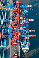 Containerschiff am Eurogate Hamburg : EUROPA, DEUTSCHLAND, HAMBURG, (EUROPE, GERMANY), 24.11.2007 Containerschiff am Eurogate Hamburg