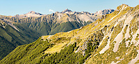 Panoramic alpine view of St. Arnaud Range, Nelson Lake National Park, South Island, New Zealand, NZ
