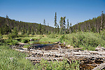 The remote Red River, a truly wild and scenic river in Idaho is an upper tributary of the Clearwater, a famous and remote trout stream.  Both are famous gold mining areas near Elk City, Idaho.